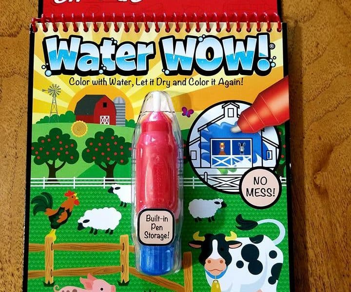 water wow by melissa and doug review